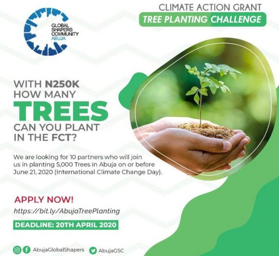 CLIMATE ACTION GRANT APPLICATION: TREE PLANTING PROJECT