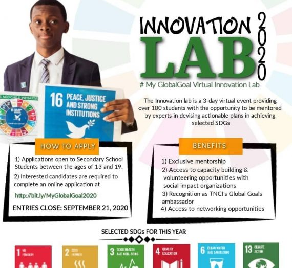 Introducing TNCI's My Global Goal Virtual Innovation Lab